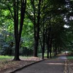 в парке Трускавца