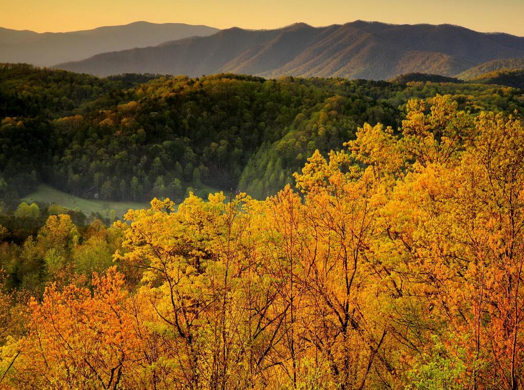 Осенняя панорама Грейт Смоки Маунтинс