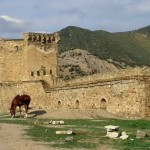 У ворот крепости