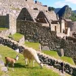 древний Мачу-Пикчу