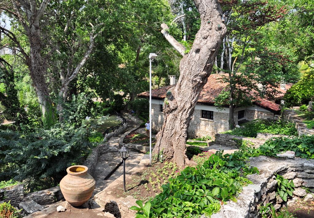 Тихие уголки ботанического сада