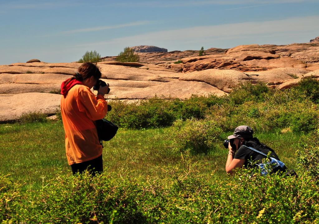 Натуралисты и фотокоры
