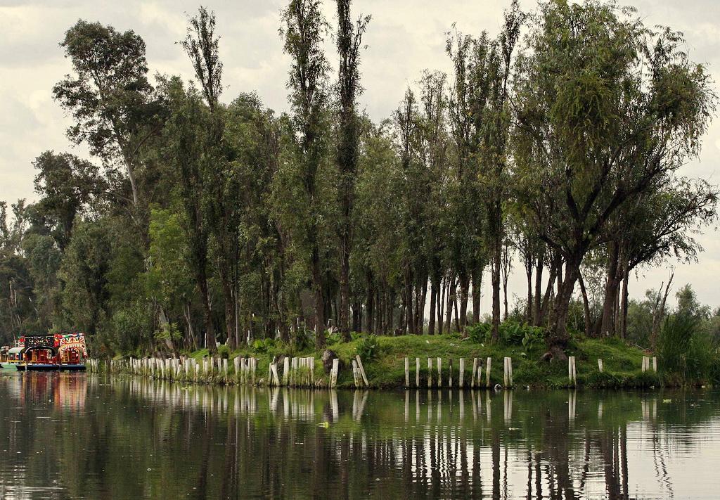 Чинампы в Сочимилько